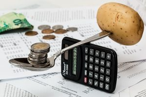 balancing money on household and food expenses
